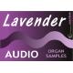 Lavender Audio