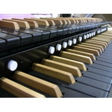 Ebony Wood-Core Classic Pro Keyboard With 15 Lighted Pistons